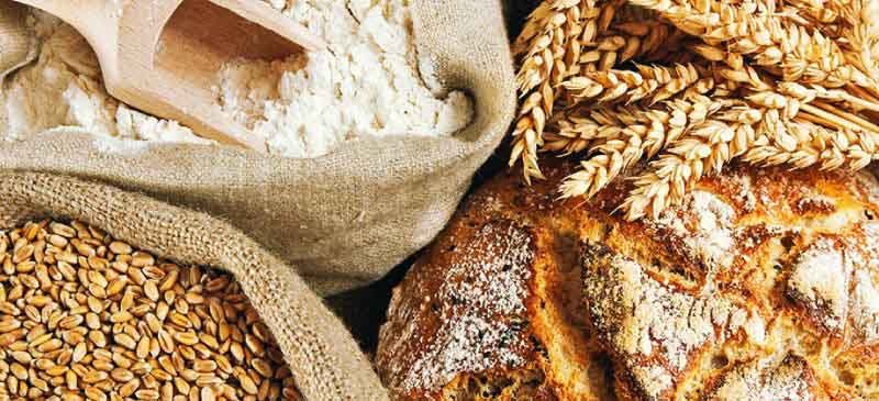 Gluten Information for Spangler products